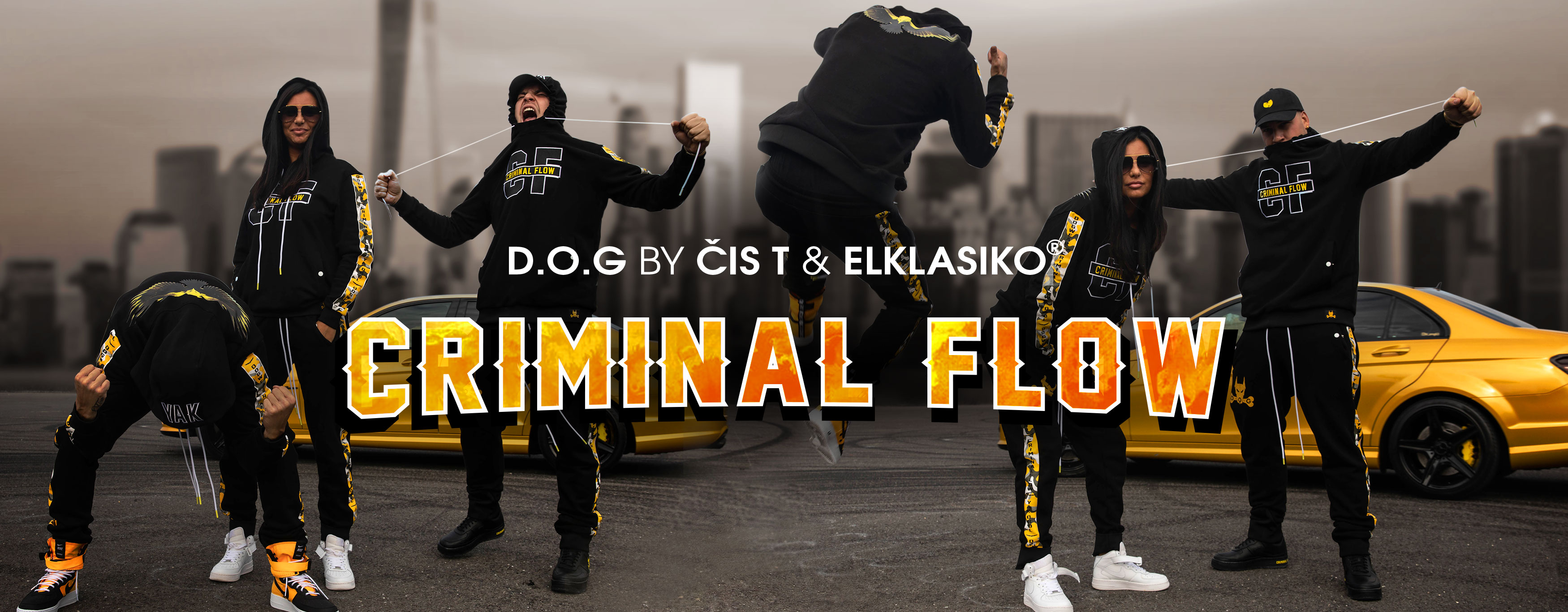 criminal-flow-web